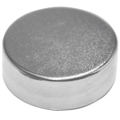 Master Magnetics .315 in. Neodymium Magnet